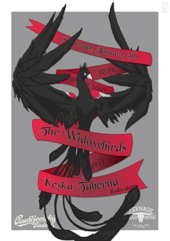 __190113_widowbirds
